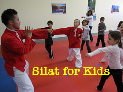 silat for kids and youth